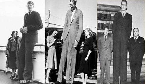 Самый высокий человек в истории, Роберт Першинг Уодлоу
